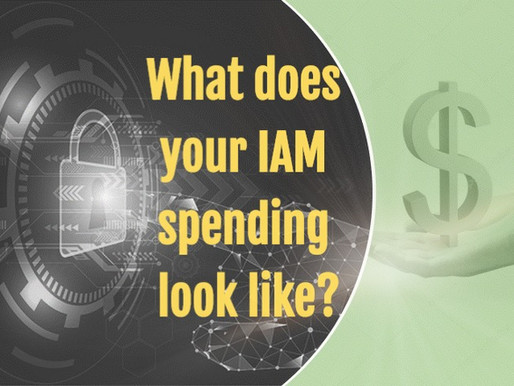 What does your IAM spending look like?