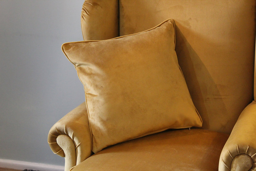 Plush Velvet Scatter Cushion - Available to match your furniture