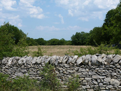 Muret en pierre sèche 2