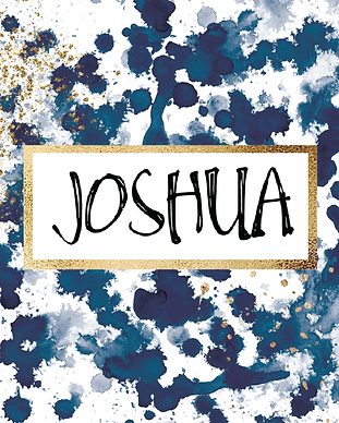 joshuacover.png