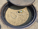 Senyco Man Hole Cover Scrubber.png