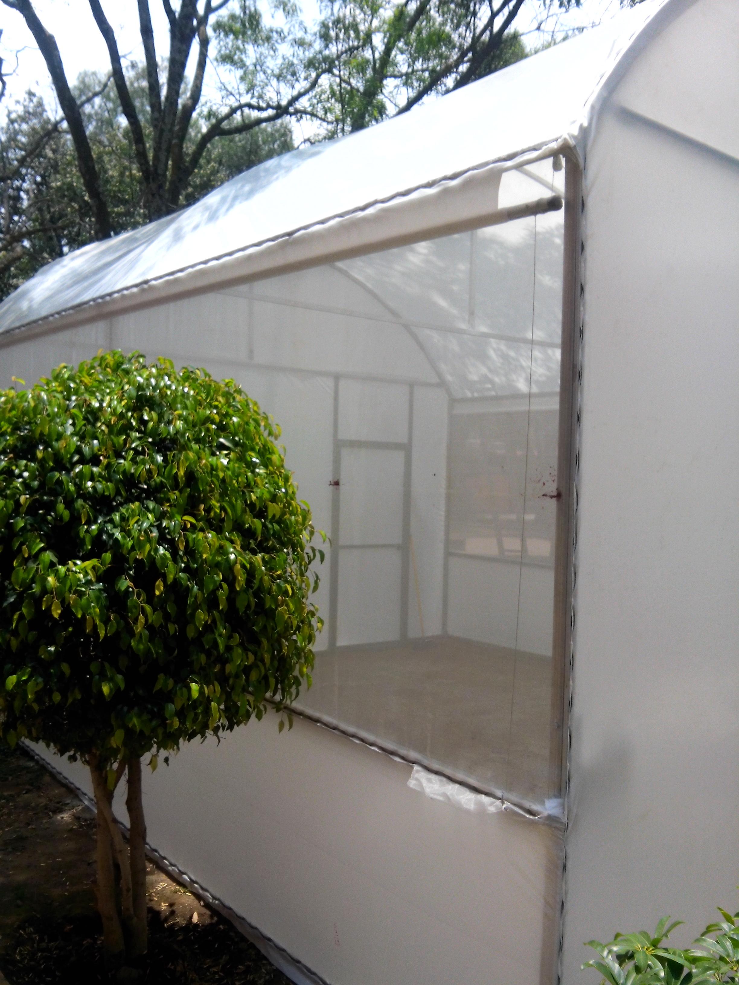 Motessori CEMAC Emprendimiento Hidroponia