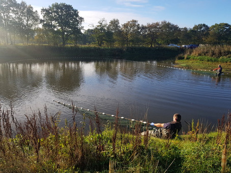 Lake Ecology of Fisheries in Lincolnshire
