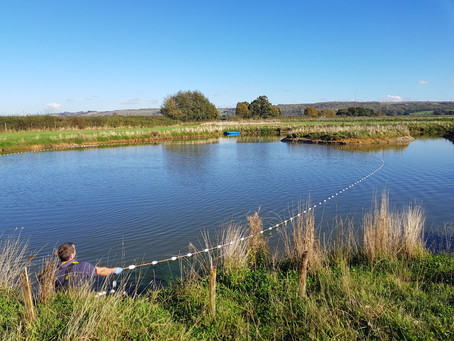 Fisheries in Lincolnshire - Lake Ecology 3