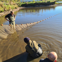 CARP AND TENCH FOR SALE 36.jpg