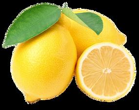 לימון יוריקה.jpg