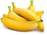 עץ בננות מחיר.jpg