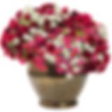cherry_bomb.jpg
