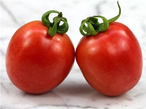 עגבנייה תמר – היינץ