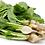 Thumbnail: זרעי סלק לבן