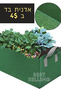 Health Goals Pinterest Graphic.jpg