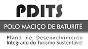 PDTIS3.png