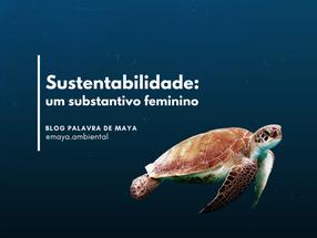 Sustentabilidade: um substantivo feminino