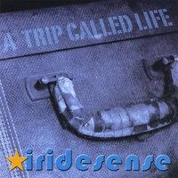 A Trip Called Life (2008)