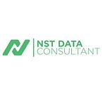 NST DATA Consultant