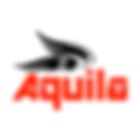 Aquila Nova Logo.png
