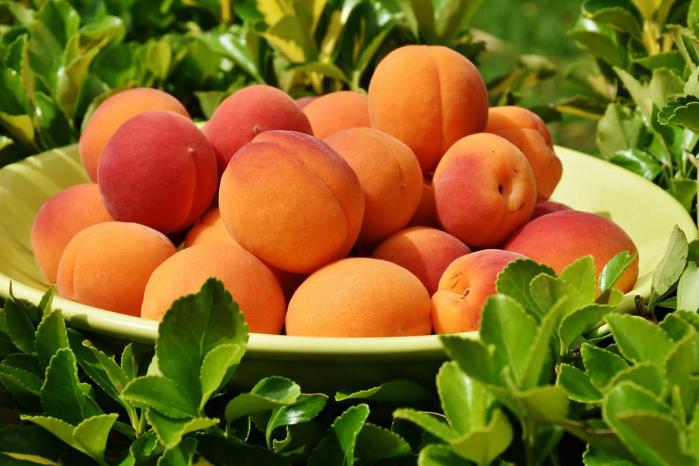 Keys to Fruitfulness