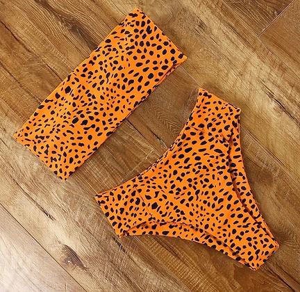 Cheetah Neon