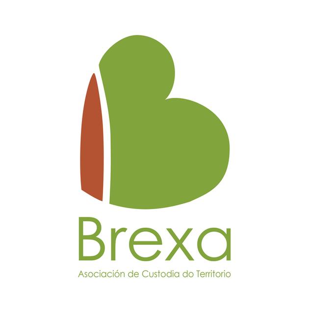 Logo design for Brexa.