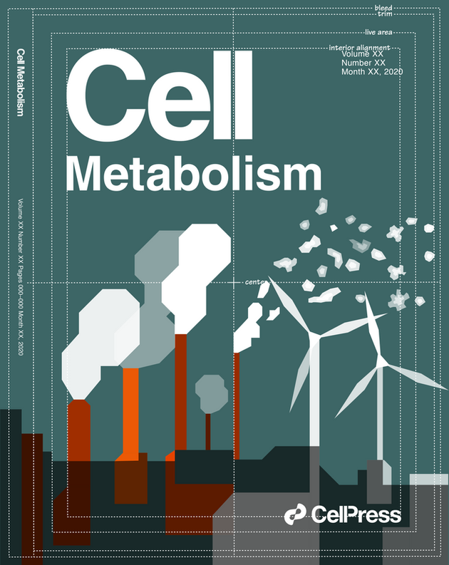 Cover illustration submitted for a review on single cell technologies to study immune cell metabolism.