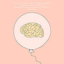 brain-cortex-unfolded_1-01.jpg