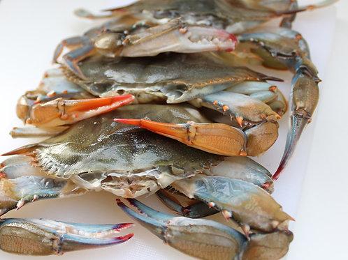 Blue Crab (1 doz.)