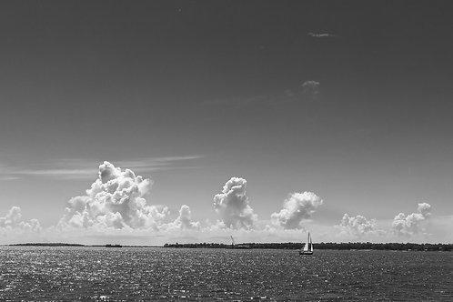 "Charleston Bay, 24""x14"" B&W Canvas print"