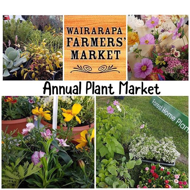 wairarapa plant market oct 2021.jpg