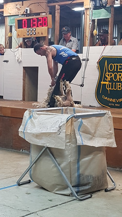Koro Mullins Memorial Speed Shear Dannevirke A&P Show 31 Jan 2020