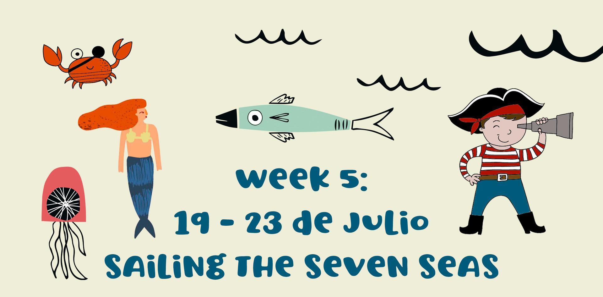Week 5: