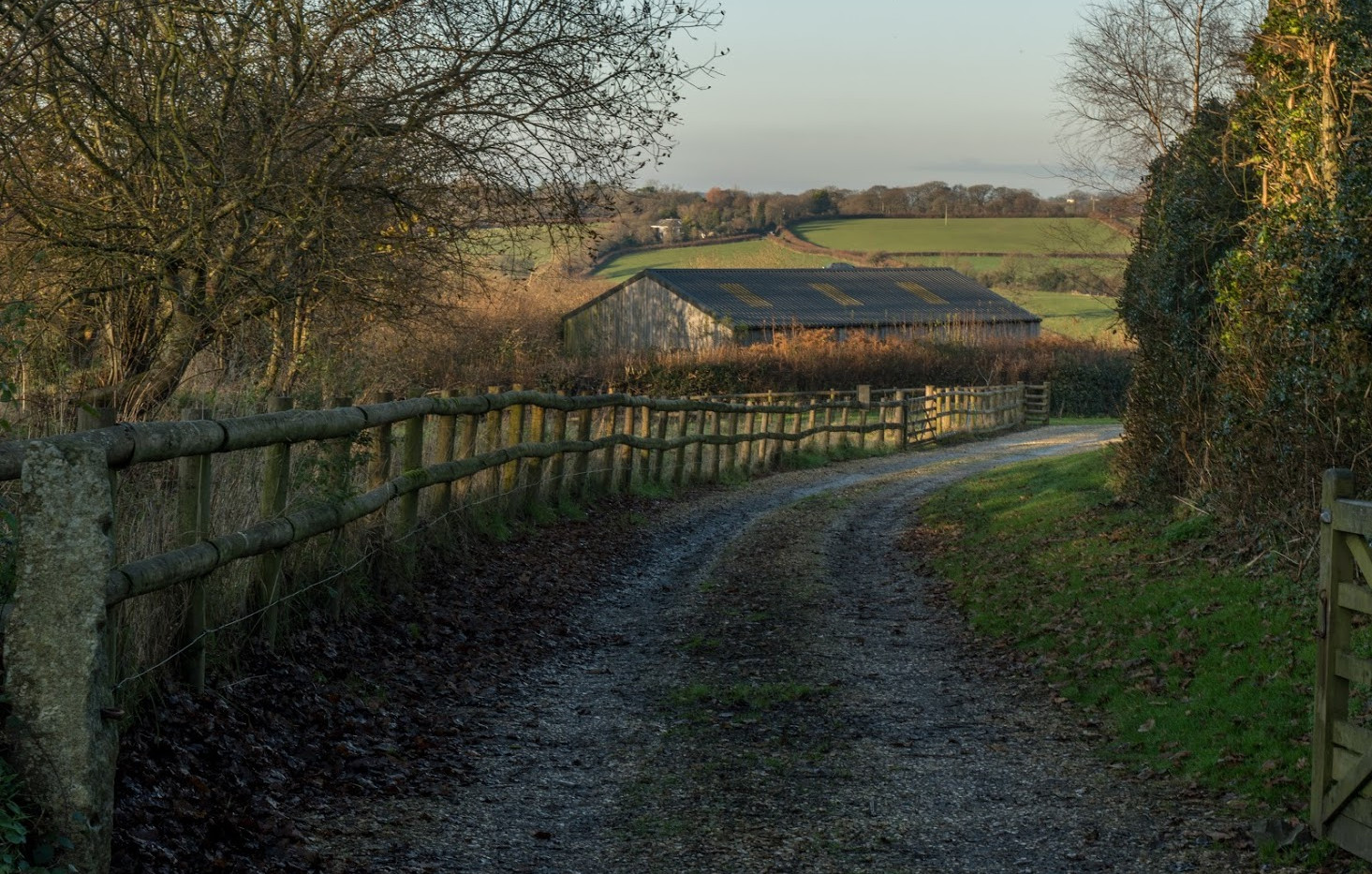 Lake Farm Drive