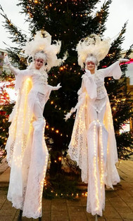 Medusa's World   Act Venice White