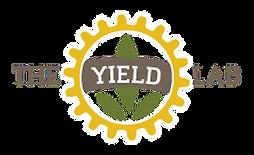 TYL logo no background 55KB border.png