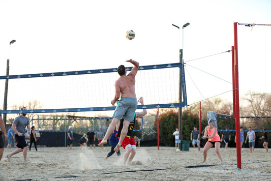 Sports Garden Photo (45).JPG