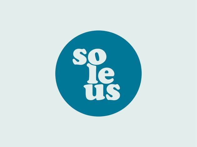 Logo og profil til Soleus massasjeklinikk