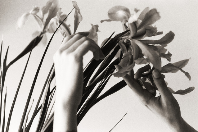 Ana Harff_Nature (20).jpg