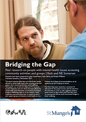bridging the gap cover.png
