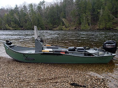 Michigan salmon guide services