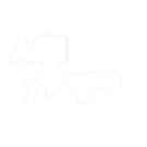 Agi Amazon Logo for Print.png