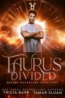 Ebook Taurus Divided.jpg