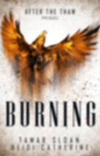 BURNING Ebook Cover.png
