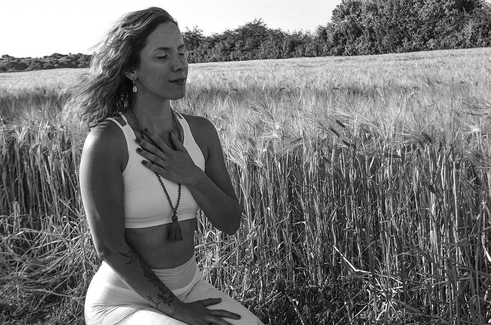 ecole du vivant formation méditation bre