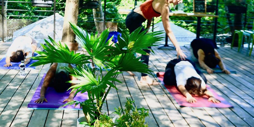 Samedi Yoga - Les Terrasses de L'Atelier, TOULOUSE / Yoga + Thé Glacé