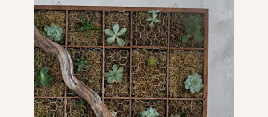 Vertical Garden selbst gemacht
