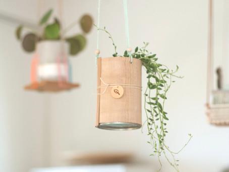 DIY-Blumenampel