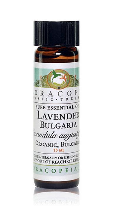 Lavender Bulgaria Essential Oil