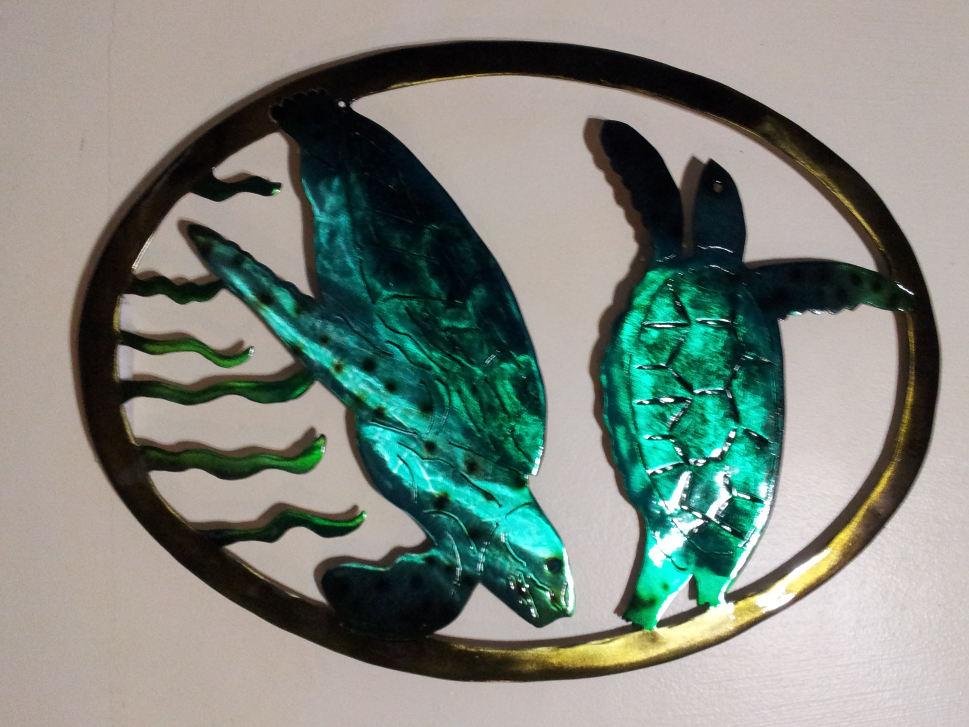 Green Sea Turtles Swimming