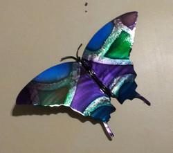 Wall Butterfly