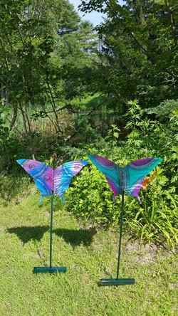 Garden Butteflies