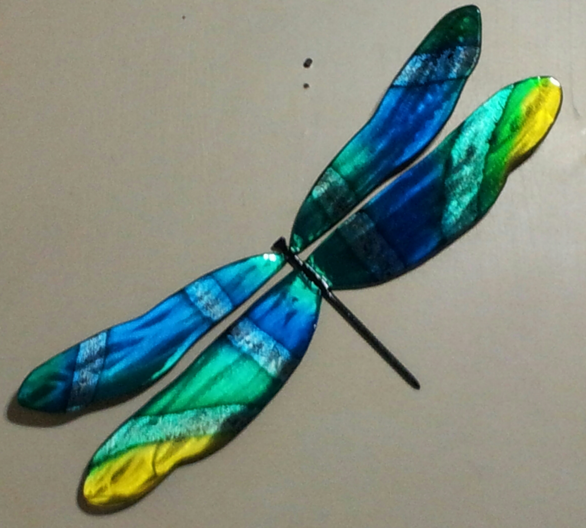 Large Wall Dragonfly